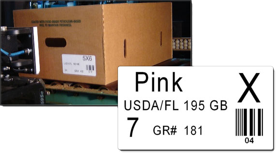 Box and Barcode Example